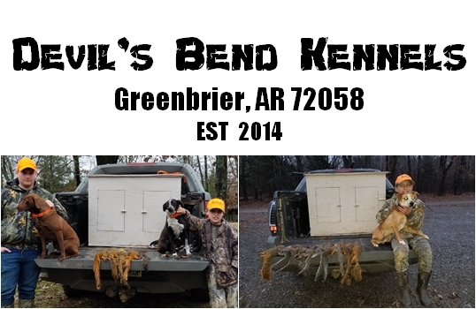 Devil's Bend Kennels